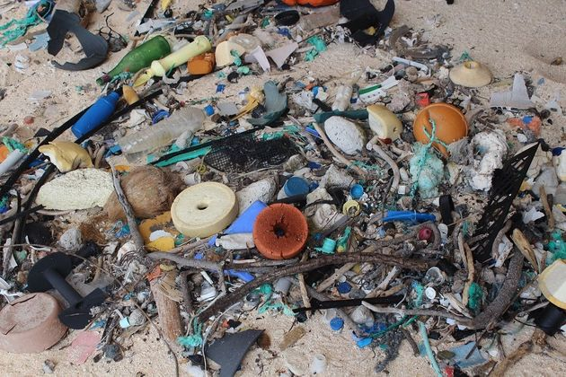 Trash is piled up on Henderson Island's East