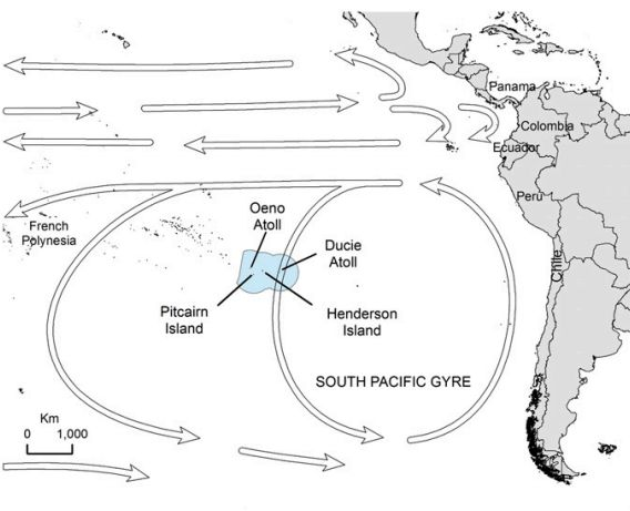 Arrows pointing counter-clockwise around Henderson Island indicate the direction of major oceanic currents that carry the tra
