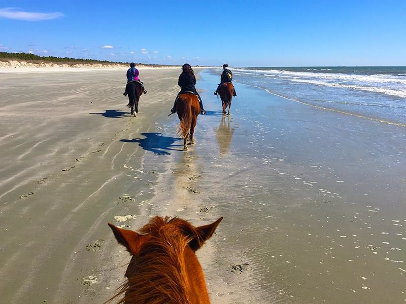 Bring your own horses, or rent horses from Inlet Point Plantation.