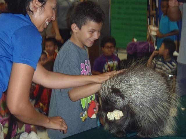 Porcupine classroom visit