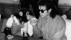 Get Ready For A Movie About Michael Jackson's Beloved Pet