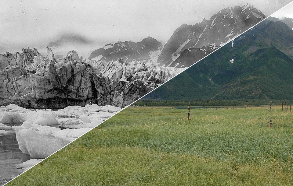 The Pedersen glacier near Aialik Bay in Alaska between 1920-1940 and then in 2005