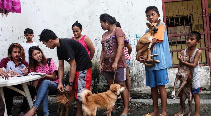 <em>Mass Vaccination of dogs in Payatas, Manila, Philippines</em>