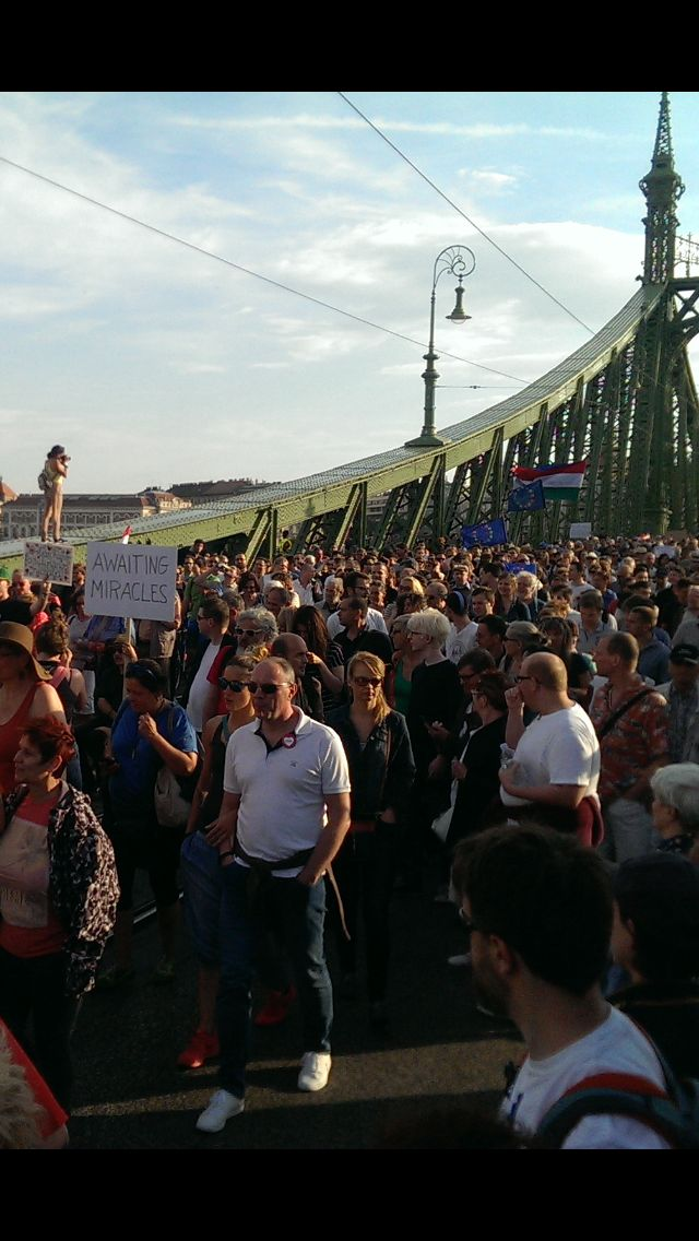 Budapest protestors this afternoon.