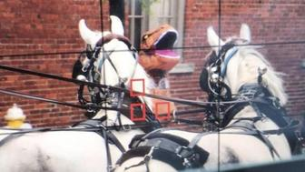 A woman dressed as a Tyrannosaurus rex is facing charges after she allegedly startled a pair of carriage horses in downtown Charleston on Thursday