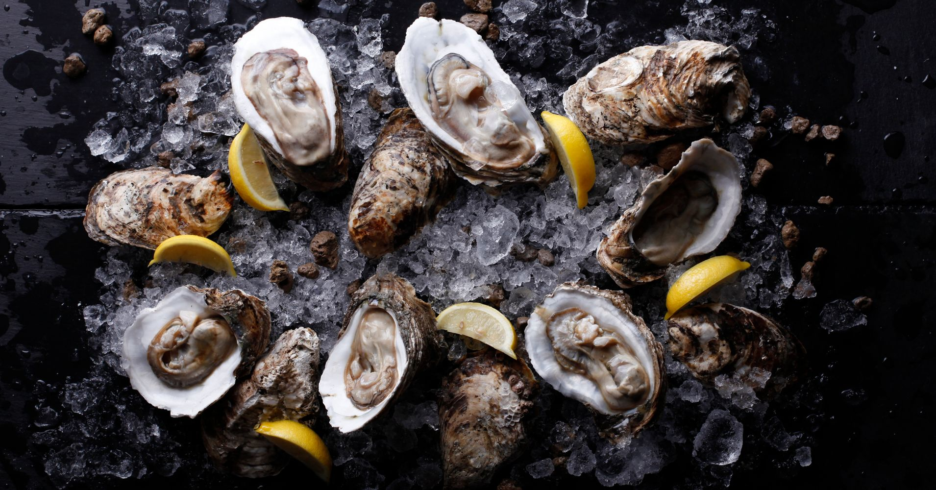 raw oysters are alive until you eat them in case you didn