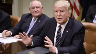 WASHINGTON, D.C. - APRIL 25: (AFP-OUT) US President Donald speaks as Agriculture Secretary Sonny Perdue looks on during a roundtable with farmers in the Roosevelt Room of the White House on April 25, 2017 in Washington, DC. During the meeting Trump signed the Executive Order Promoting Agriculture and Rural Prosperity in America. (Photo by Olivier Douliery-Pool/Getty Images)