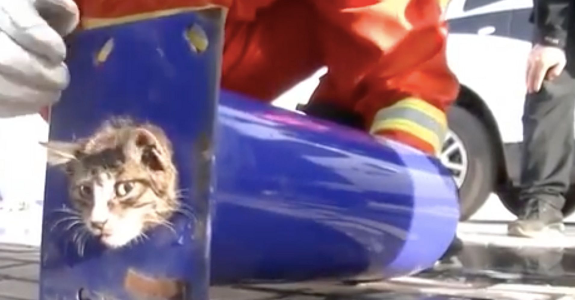 Here's Some Hilarious Commentary On A Cat Stuck In A Pipe - HuffPost