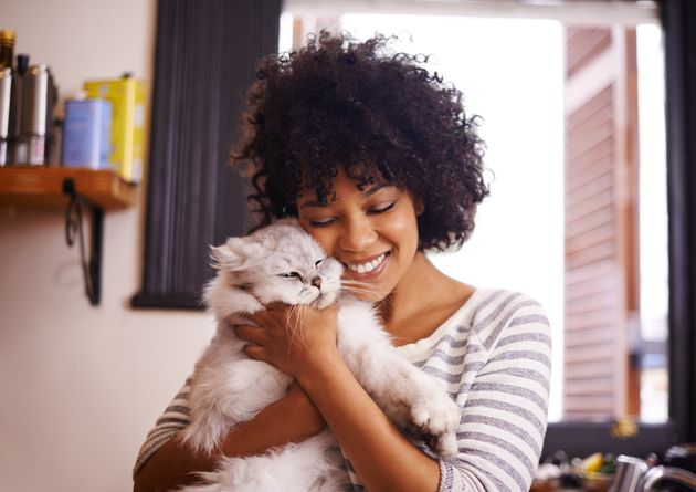 Employee with 'cattitude' to receive cat-cuddling benefits