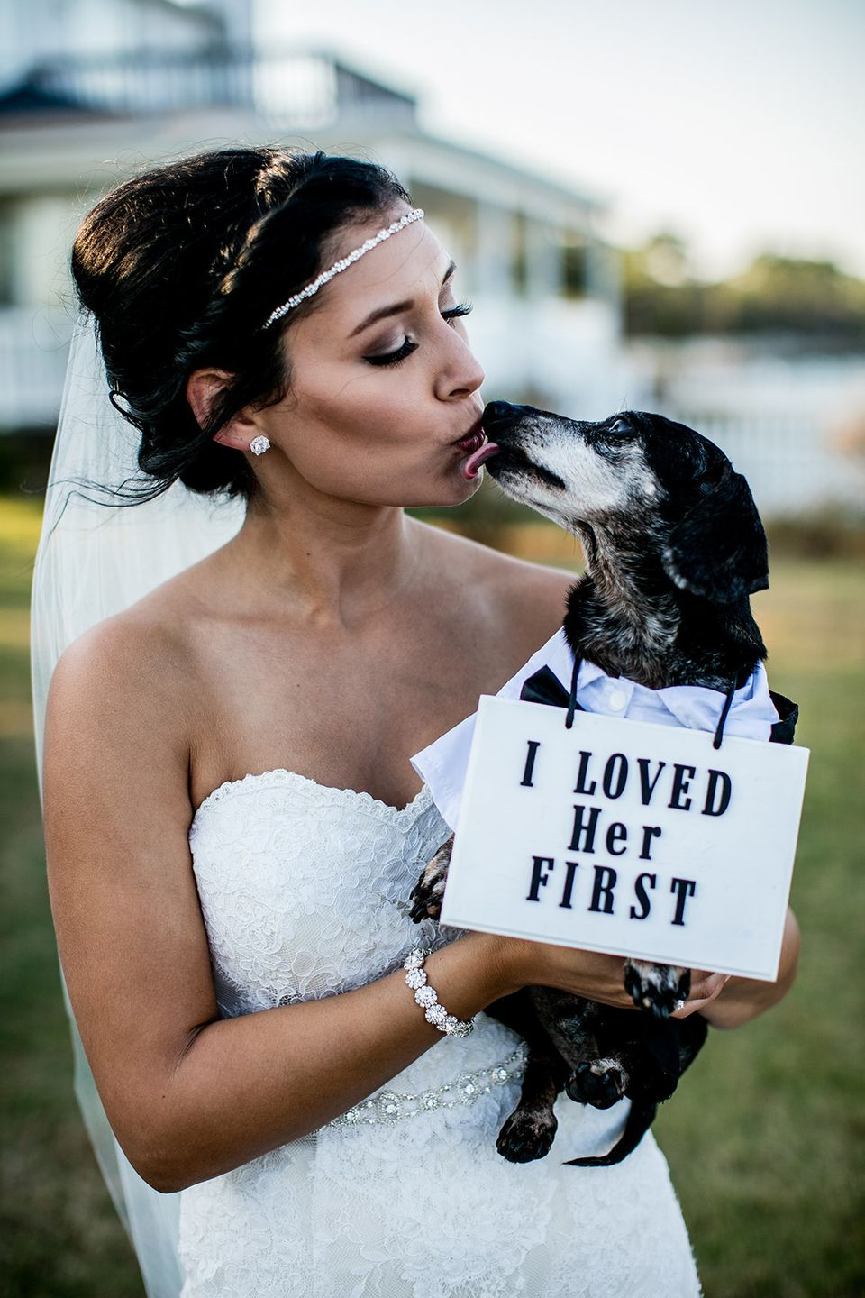 Stray Dog Crashes A Wedding And Finds His Own Happily Ever After - After a stray dog crashed their wedding this couple had the best reaction ever