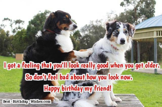 I Gt A Feeling That Youll Look Really Good When You Get Older So Dont Feel Bad About How Now Happy Birthday My Friend