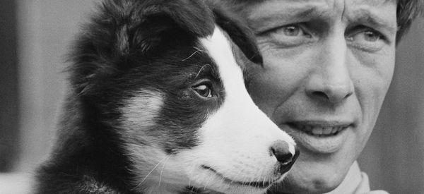 'Blue Peter' Stars Past And Present Lead Tributes to John Noakes