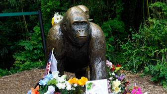 CINCINNATI, OH - JUNE 2:  Flowers lay around a bronze statue of a gorilla and her baby outside the Cincinnati Zoo's Gorilla World exhibit days after a 3-year-old boy fell into the moat and officials were forced to kill Harambe, a 17-year-old Western lowland silverback gorilla June 2, 2016 in Cincinnati, Ohio. The exhibit is still closed as zoo officials work to upgrade safety features of the exhibit.  (Photo by John Sommers II/Getty Images)