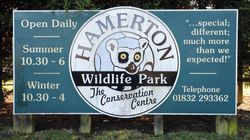 Zookeeper killed In Cambridgeshire after tiger enters