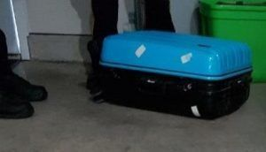 The suitcase in which the poodle was found.