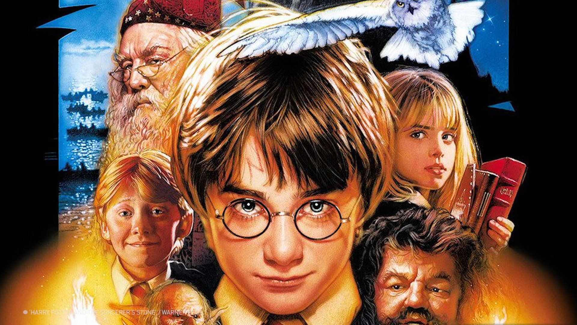 There are quite a few differences between the Harry Potter books and films