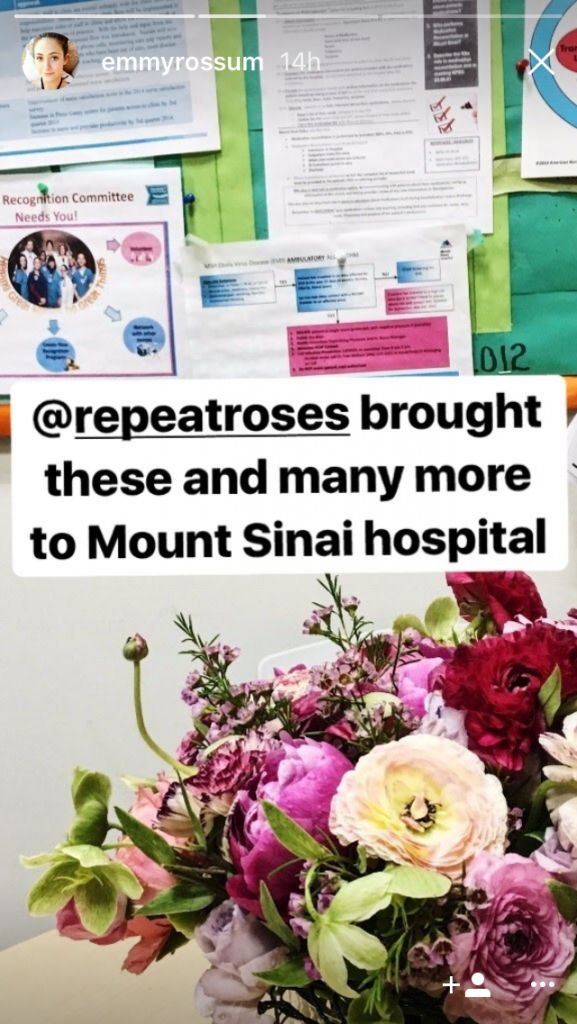 Rossum posted about the great work Repeat Roses does on her Instagram Story.