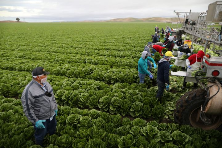 2017 06 28 New Bill Aims To Protect Immigrant Farmworkers  >> A New Bill Would Protect Immigrant Farmworkers It Has Little Chance