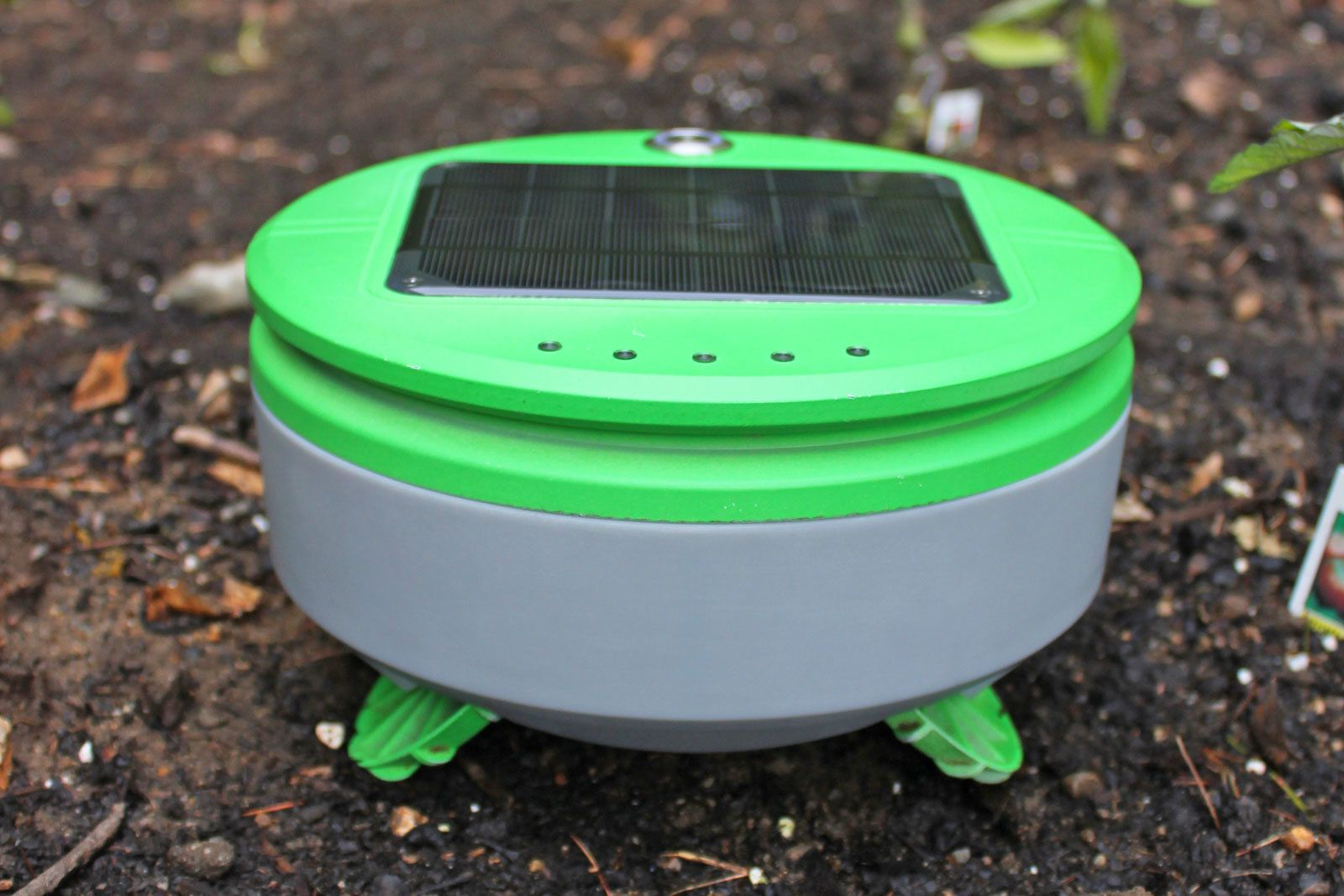 This Plucky Little Robot Will Weed Your Garden For