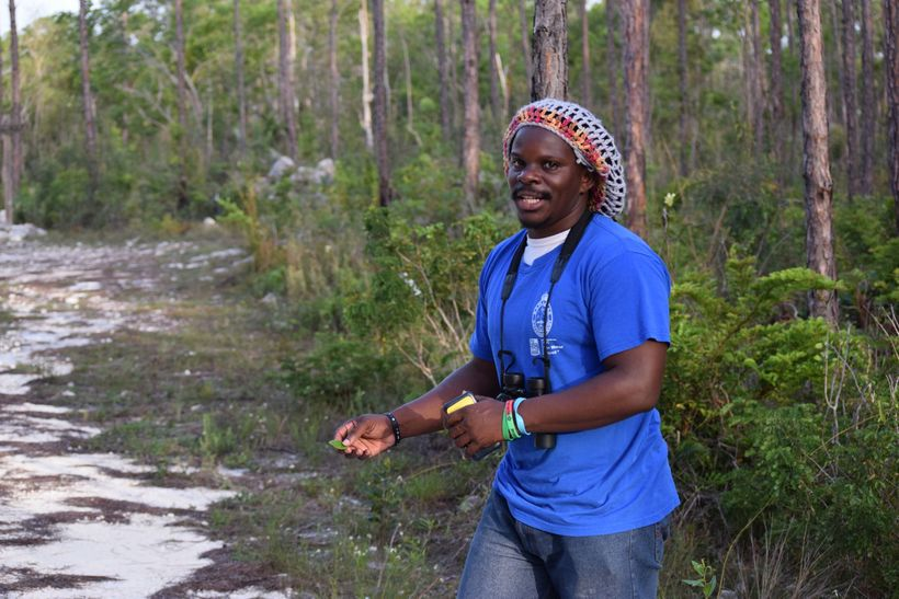 Scott Johnson on the trail of a Bahama Oriole