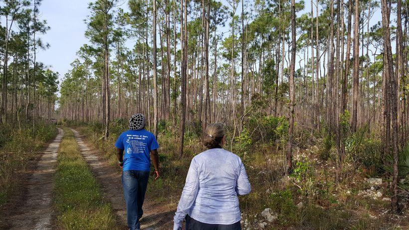 Hiking through Blue Holes National Park