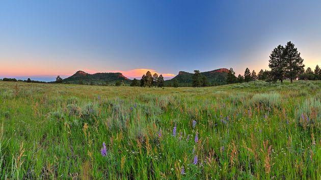 El área conocida como Bears Ears, cerca de Blanding, Utah, fue designado monumento nacional por el presidente ...