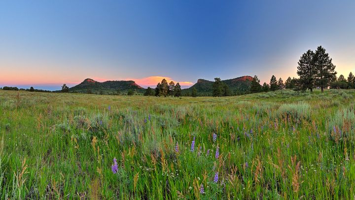The area known as Bears Ears, near Blanding, Utah, wasdesignated a national monument by President Barack Obama in 2016.