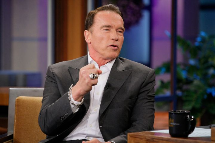 California Gov. Arnold Schwarzenegger moved quickly to implement his state's version of Obamacare shortly afte