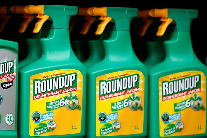 Monsanto's Roundup weedkiller atomizers are displayed for sale at a garden shop near Paris.