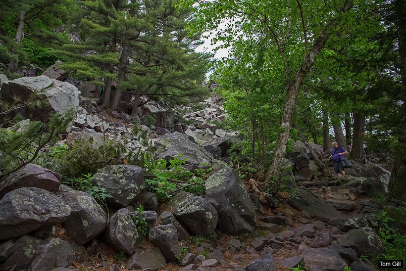 The rocky paths of the East and West Bluff Trails.