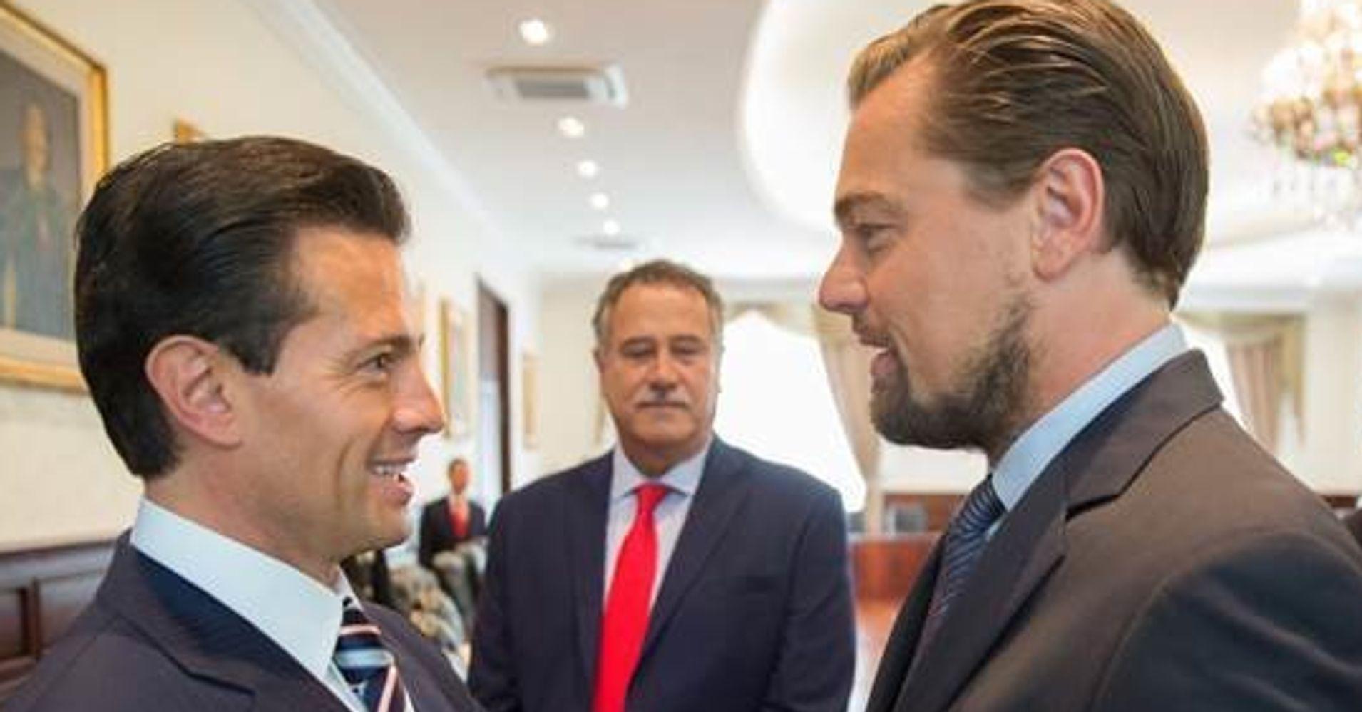 Leonardo DiCaprio's Efforts Prompt Mexico To Commit To Saving Rare Porpoise