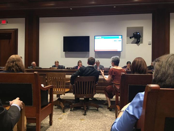 Adam Eichen and Frances Moore Lappé testify in front of the Massachusetts Joint Committee on Election Laws, June 8th, 2017.