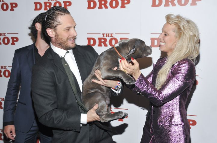 """Hardy at """"The Drop"""" movie premiere in New York with his co-star Zora the dog and Noomi Rapace in 2014."""