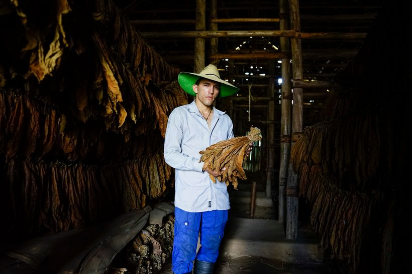 I asked our driver who took us to Viñales to take us to a tobacco plantation that was not touristy, as some of them can be. I