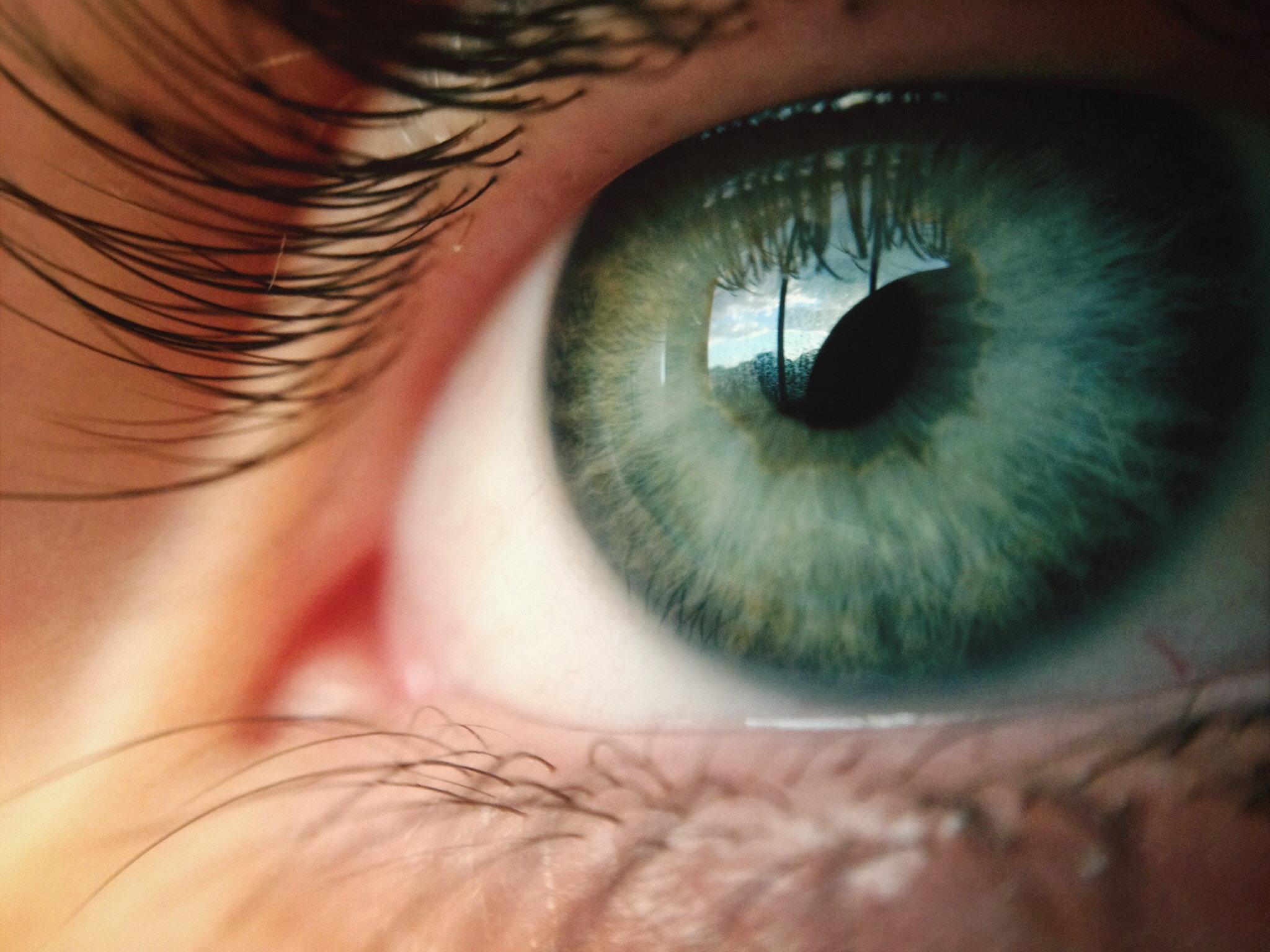 ¿Cuál es tu inteligencia visual? Este test te lo