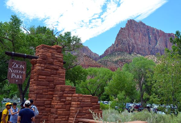 National park campsites can fill up months in advance during peak season at popular sites like Zion National Park.
