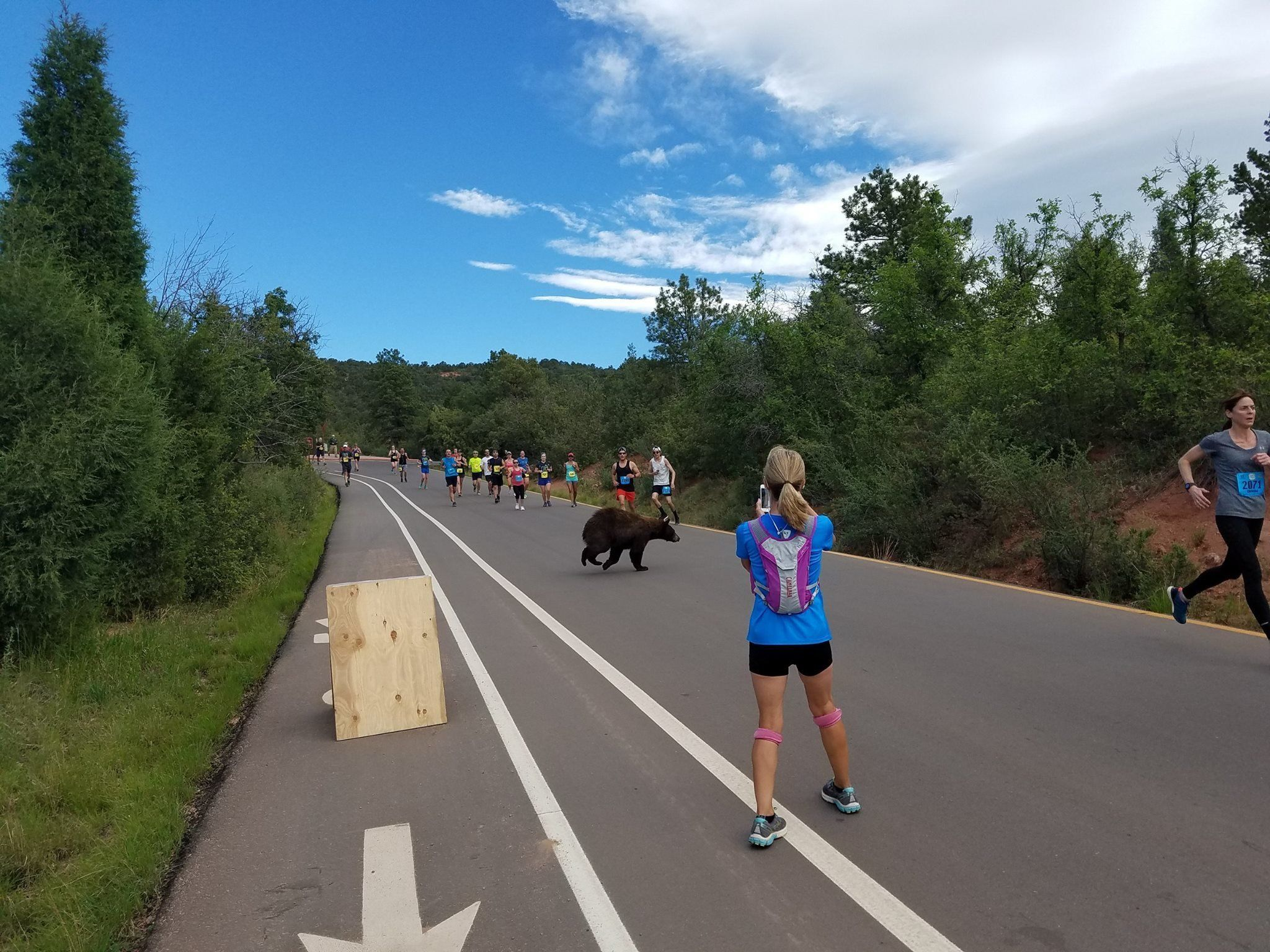 A bear gave runners a startle in Colorado over the weekend