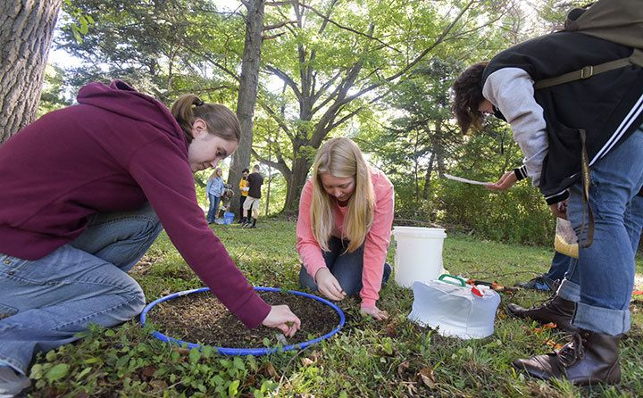 Students using mustard extraction to collect earthworms at Wallace Lake in Berea, Ohio.