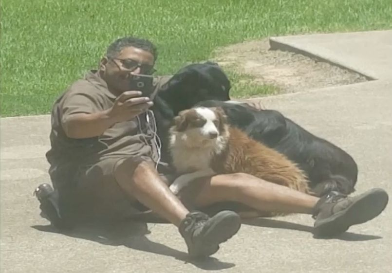 Delivery Driver Gets Caught Taking Selfies With Dogs And It's Too
