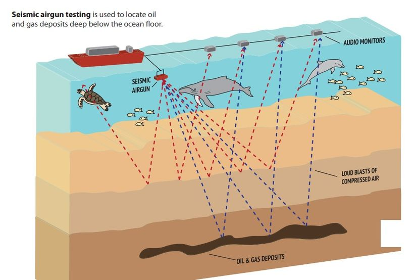 Deadly seismic blasts can be heard on the other side of ocean basins.
