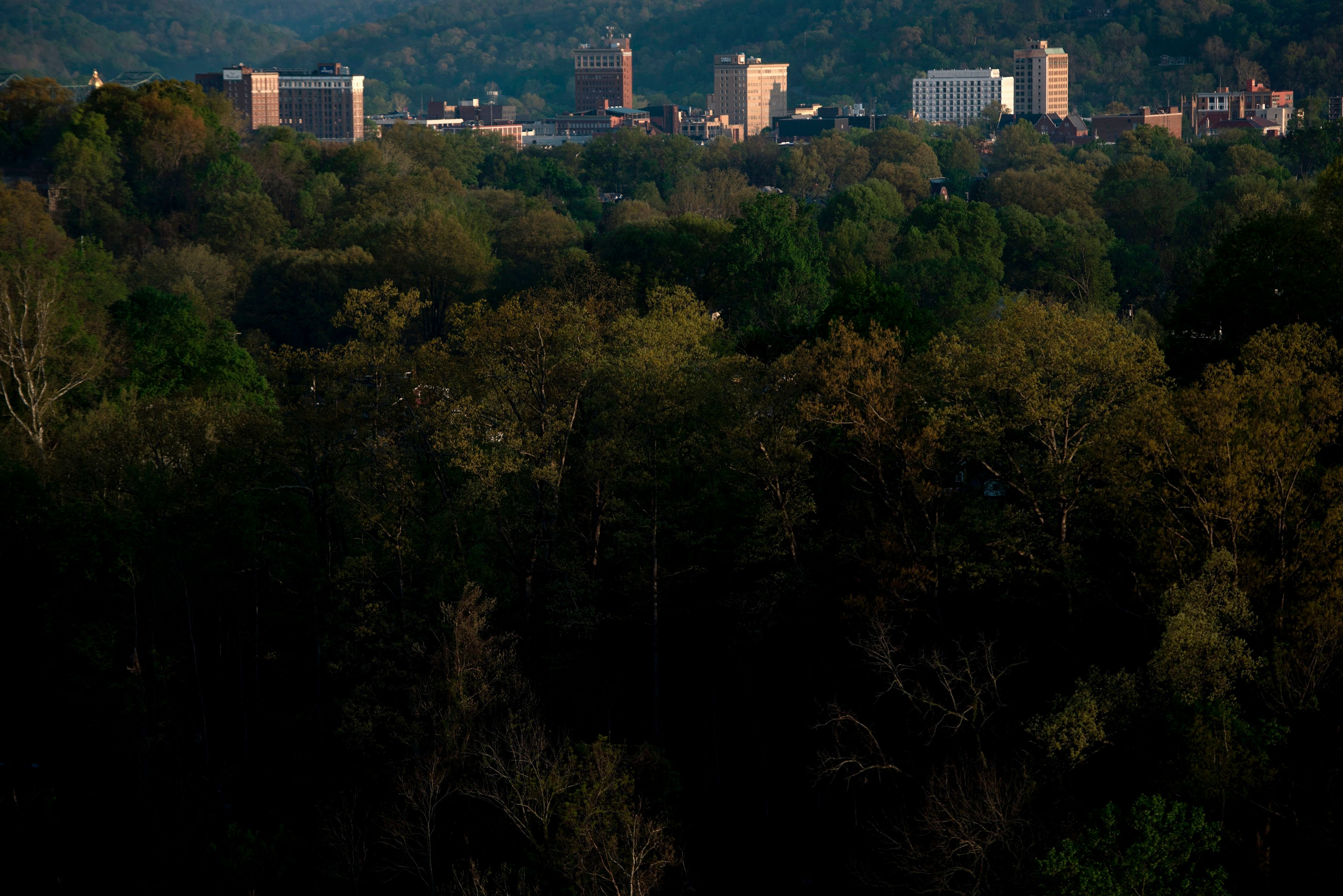 The once economically strong industrial city Huntington is seen nestled in trees along the Ohio River on April 20, 2017 in West Virginia. Huntington, the city in the northwest corner of West Virginia, bordering Kentucky, has been portrayed as the epicenter of the opioid crisis. On August 15, 2016, from 3:00 pm to 9:00 pm, 28 people in the city overdosed on heroin laced with fentanyl, a synthetic opioid far more powerful and dangerous than heroin. The economic incentives are powerful: one kilogram of fentanyl costs $5,000, which can make a million tablets sold at $20 each for a gain of $20 million. 'This epidemic doesn't discriminate,' Huntington Mayor Steve Williams said. 'Our youngest overdose was 12 years old. The oldest was 77.'  / AFP PHOTO / Brendan Smialowski / TO GO WITH AFP STORY by Heather SCOTT, US-health-drugs-WestVirginia        (Photo credit should read BRENDAN SMIALOWSKI/AFP/Getty Images)
