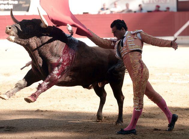 Ivan Fandino has died in a bullring in