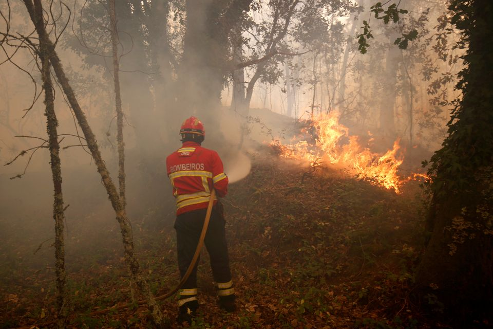A firefighter tries to extinguish fire during a forest fire near the village of