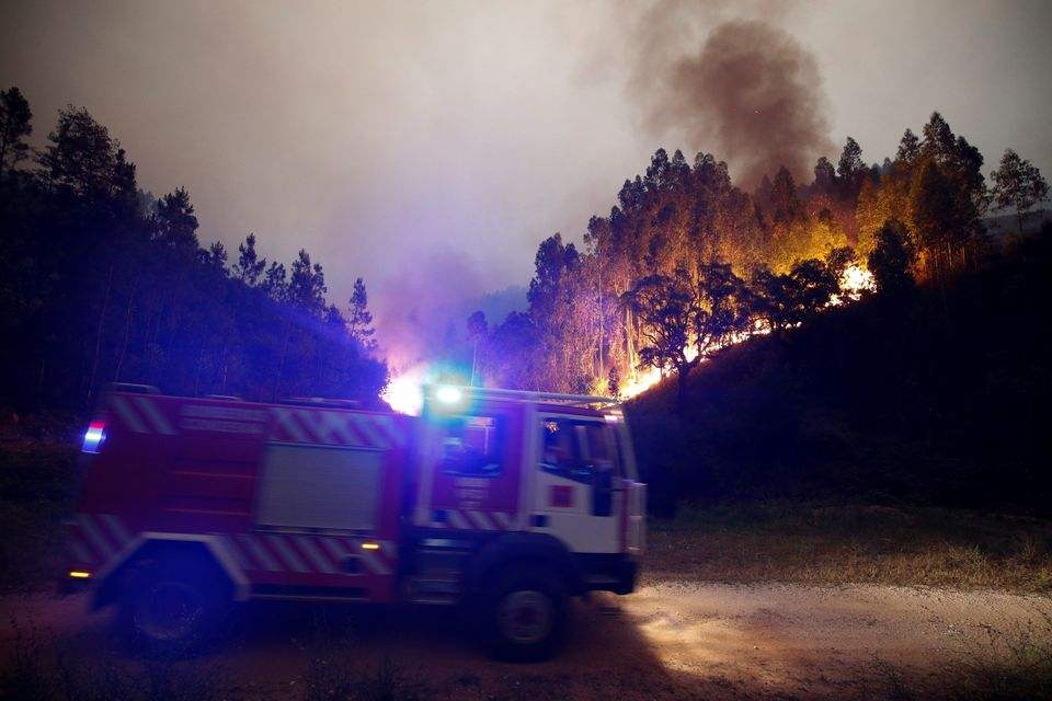 Firefighters work to put out a forest fire near Bouca in central