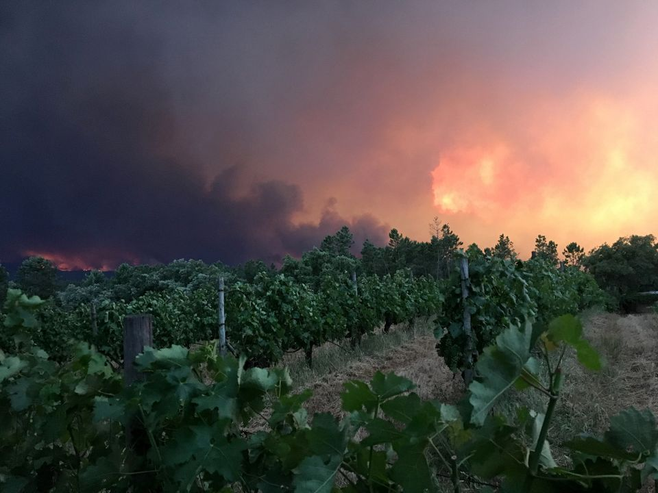 Smoke rises from a forest fire, seen from the village of