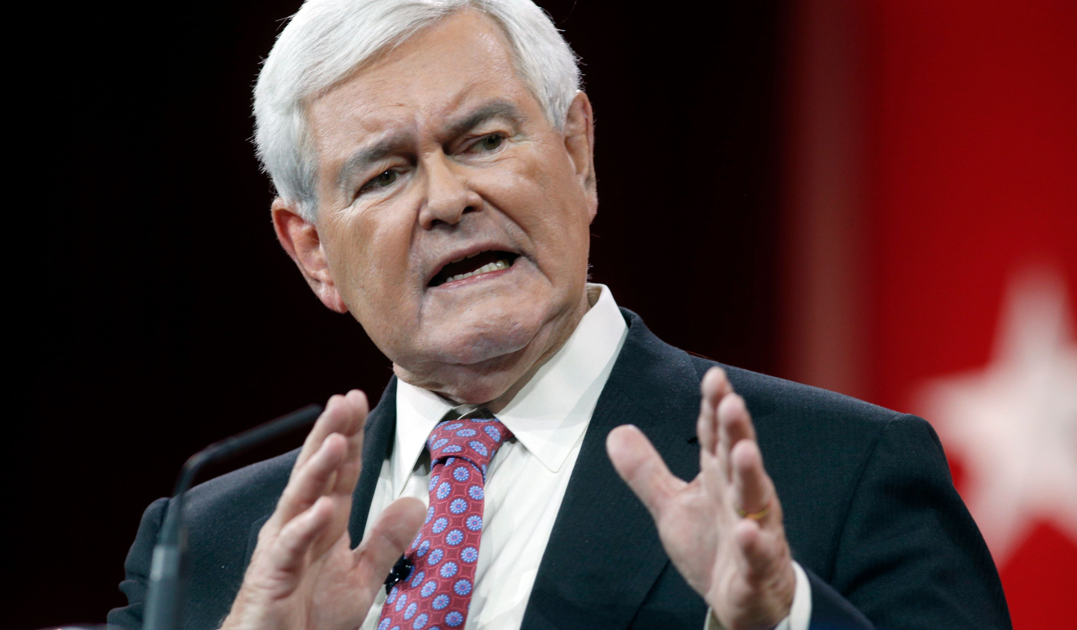 Former Speaker of the House Newt Gingrich addresses the Conservative Political Action Conference (CPAC) at National Harbor in Maryland February 27, 2015.  REUTERS/Kevin Lamarque  (UNITED STATES - Tags: POLITICS)