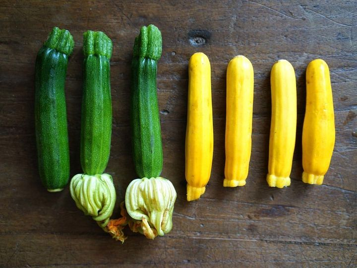 <p>Mini zucchini and yellow squash</p>