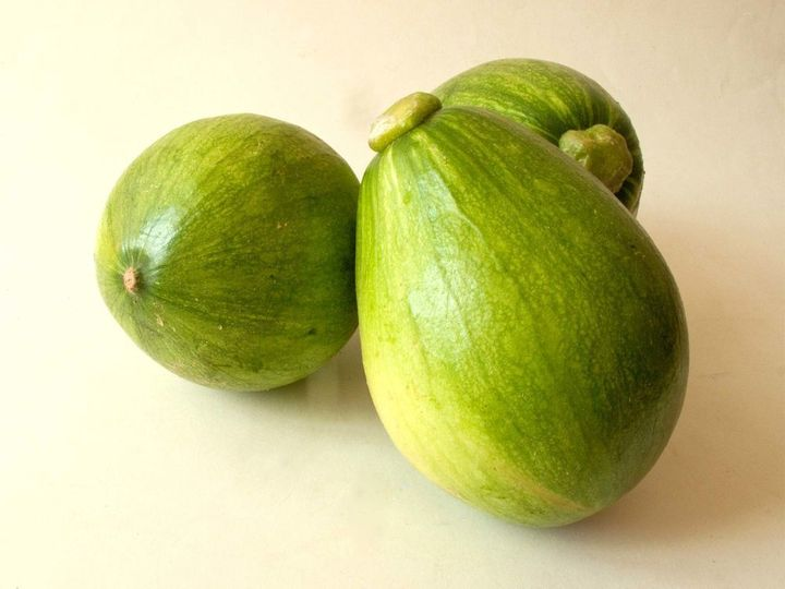 <p>Avocado Squash</p>