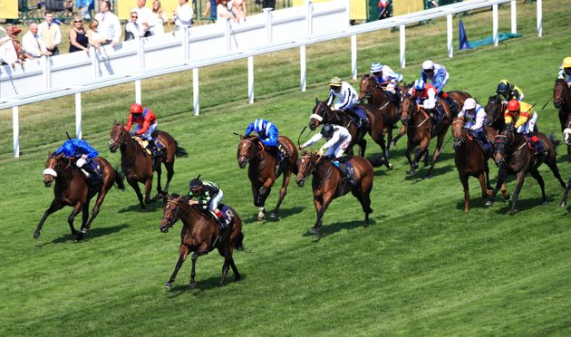 Animal rights campaigners are concerned about the high temperatures horses will be competing at...