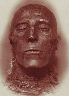 Head of pharaoh Seti I's mummy, Cairo Museum.